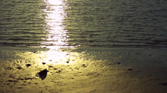 Closeup of extremely bright and sunny shoreline Stock Footage