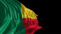 Flag of Benin Stock Footage