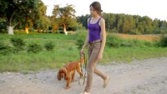Young girl with her dog walking along the road in the country - stock footage