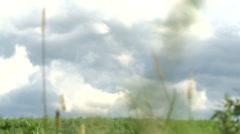 Laka - meadow - grassland Stock Footage