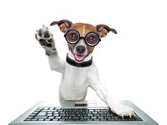 Stock Illustration of silly computer dog