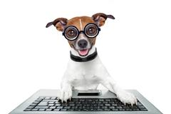 Silly computer dog Stock Illustration