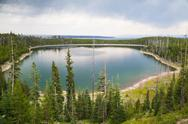 Stock Photo of calm surface duck lake in yellowstone forest