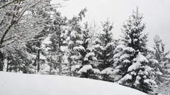 Winterwonderland Austria - stock footage