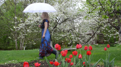 Woman rubber boots dress umbrella garden tulips blooming trees Stock Footage