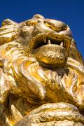 Gold  lion statues  on blue isolated Stock Photos