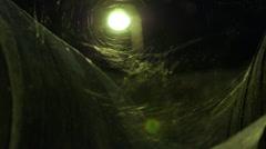 Cobweb on wine barrels in storehouse - stock footage