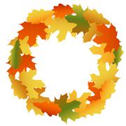 Maple and oak autumn leaves Stock Illustration