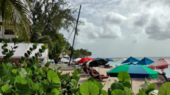 Barbados Paynes bay 033 different colored beach umbrellas behind exotic plants Stock Footage