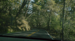 Forest Winding Road 1 Stock Footage
