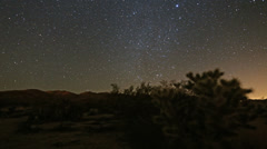 Desert stars timelapse night sky stars and meteors at Joshua Tree - stock footage