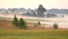 Rural landscape with fog in the morning, background Stock Footage