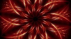 Flower of light Stock Footage
