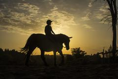horse riding silhouette - stock photo