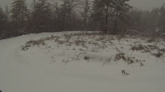 Way through snowy forest Stock Footage