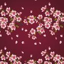 Stock Illustration of seamless background maroon with branch of cherry tree