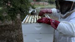Beekeeper working with hive 01 Stock Footage