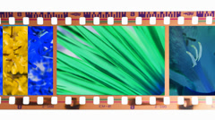 Stock Video Footage of photo film developer