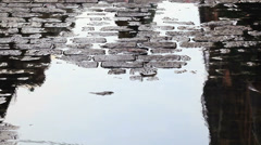 Pedestrians are reflected in a puddle on a street in New York City. Stock Footage
