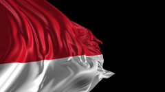Flag of Indonesia Stock Footage