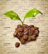 fresh coffee beans - stock illustration