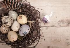 clutch of speckled easter eggs - stock photo