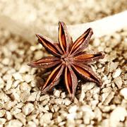 decorative star anise - stock photo
