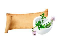 Herb banner Stock Photos