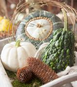 decorative gourds - stock photo