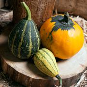 three different decorative pumpkins - stock photo