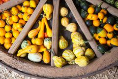 assortment of different decorated pumpkins - stock photo