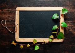 Trailing leaves on a blackboard Stock Photos