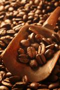 fresh coffee beans, a valuable commodity - stock photo