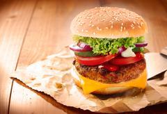 Delicious cheeseburger Stock Photos