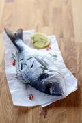 Whole raw fish on crumpled paper Stock Photos