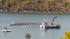 Stock Video Footage of fish farm