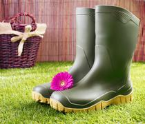 gumboots with a pink gerbera daisy - stock photo