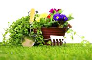 Stock Photo of gardening objects on a lawn and white background