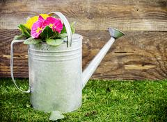 Old galvanised metal watering can Stock Photos