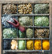 Assorted culinary herbs and spices Stock Photos