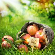 Healthy farm fresh apples graded bio Stock Photos