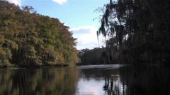 A slow pan across Fisheating Creek in Florida. Stock Footage