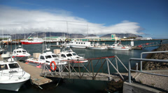 Fishing boats in the port. Sunny e windy day. Hofn, Iceland. Stock Footage