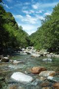 Stock Photo of quiete mountain river, summer season