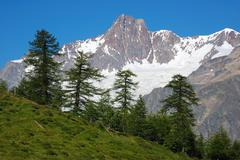 Stock Photo of rocky peak with glaciers, mont blanc massif, in foreground pine forest, sunny da