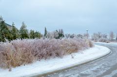 Frozen ice branches in winter. whitby, ontario, canada. Stock Photos
