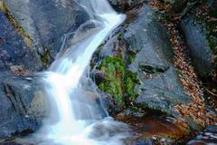 Stock Photo of little brook mountain waterfall
