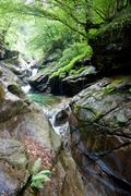 Stock Photo of mountain stream