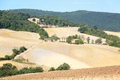 Stock Photo of tuscan landscape
