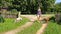 Girl with English Cocker Spaniel in the countryside  Stock Footage